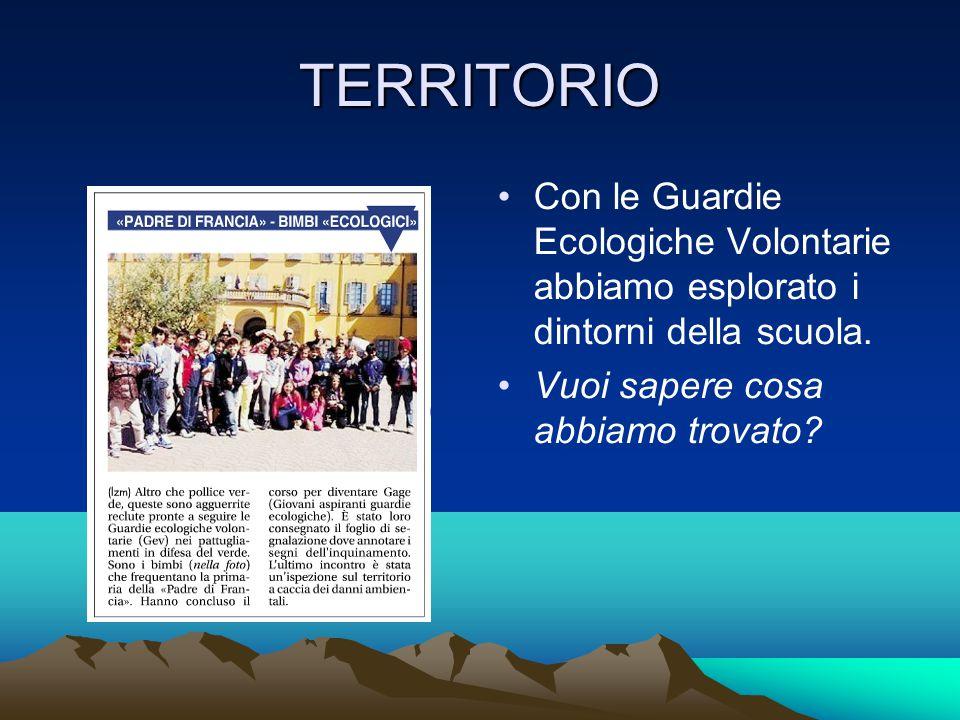 TERRITORIO Con le Guardie Ecologiche Volontarie abbiamo esplorato i dintorni della scuola. Vuoi sapere cosa abbiamo trovato?