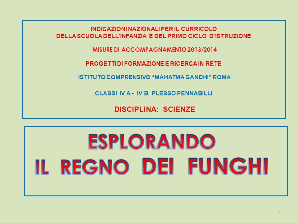 INDICAZIONI NAZIONALI PER IL CURRICOLO DELLA SCUOLA DELL'INFANZIA E DEL PRIMO CICLO D'ISTRUZIONE MISURE DI ACCOMPAGNAMENTO 2013/2014 PROGETTI DI FORMAZIONE E RICERCA IN RETE ISTITUTO COMPRENSIVO MAHATMA GANDHI ROMA CLASSI IV A - IV B PLESSO PENNABILLI DISCIPLINA: SCIENZE 1