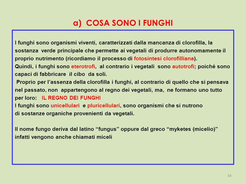 a) COSA SONO I FUNGHI I funghi sono organismi viventi, caratterizzati dalla mancanza di clorofilla, la sostanza verde principale che permette ai vegetali di produrre autonomamente il proprio nutrimento (ricordiamo il processo di fotosintesi clorofilliana).