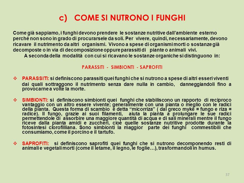 c) COME SI NUTRONO I FUNGHI Come già sappiamo, i funghi devono prendere le sostanze nutritive dall'ambiente esterno perché non sono in grado di procurarsele da soli.