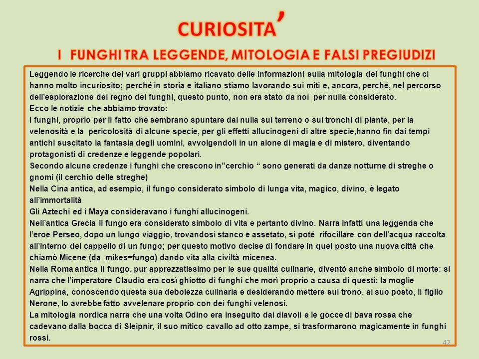 Leggendo le ricerche dei vari gruppi abbiamo ricavato delle informazioni sulla mitologia dei funghi che ci hanno molto incuriosito; perché in storia e italiano stiamo lavorando sui miti e, ancora, perché, nel percorso dell'esplorazione del regno dei funghi, questo punto, non era stato da noi per nulla considerato.