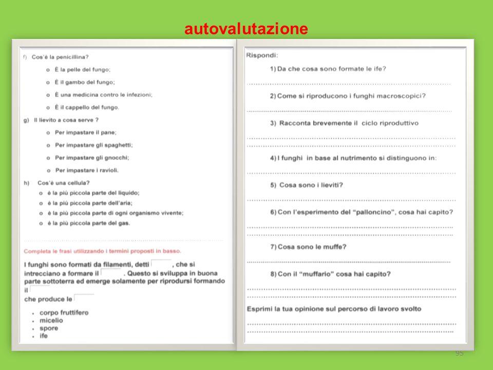 autovalutazione 95