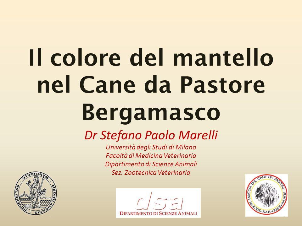 Il colore del mantello nel Cane da Pastore Bergamasco Dr Stefano Paolo Marelli Università degli Studi di Milano Facoltà di Medicina Veterinaria Dipart