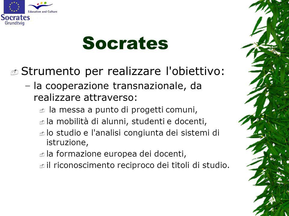 Socrates  Strumento per realizzare l'obiettivo: –la cooperazione transnazionale, da realizzare attraverso:  la messa a punto di progetti comuni,  l