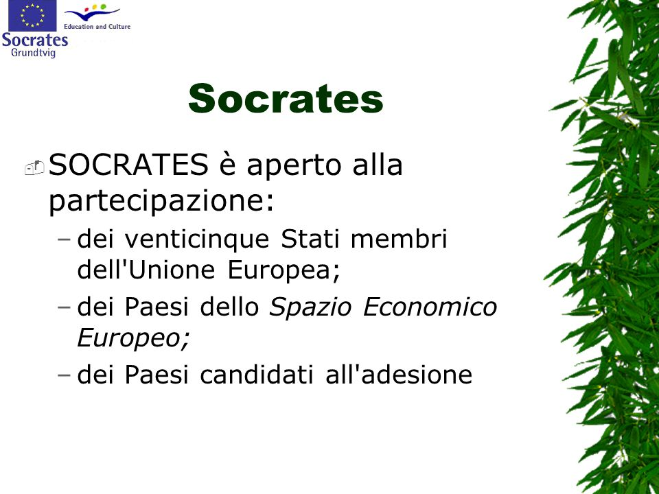 Socrates  SOCRATES è aperto alla partecipazione: –dei venticinque Stati membri dell'Unione Europea; –dei Paesi dello Spazio Economico Europeo; –dei P