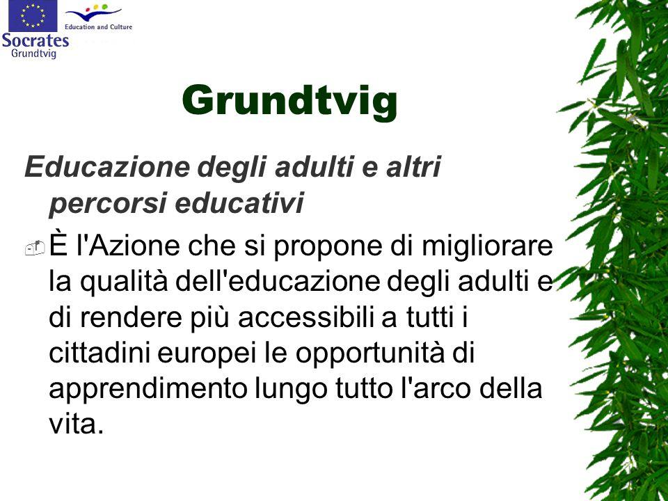 Grundtvig Educazione degli adulti e altri percorsi educativi  È l'Azione che si propone di migliorare la qualità dell'educazione degli adulti e di re