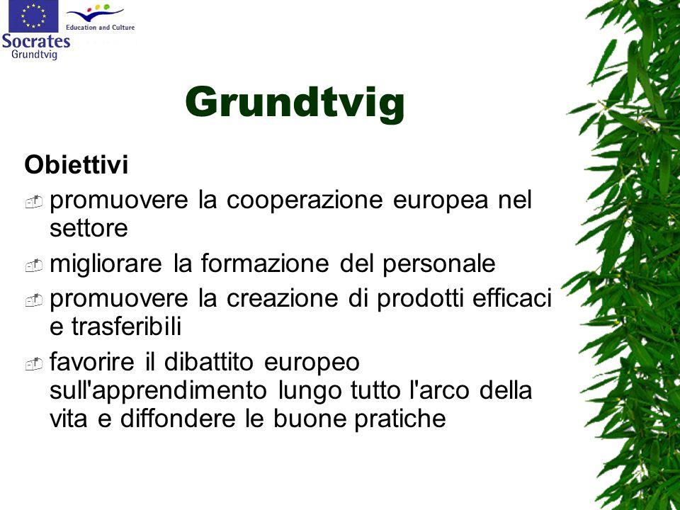 Grundtvig Obiettivi  promuovere la cooperazione europea nel settore  migliorare la formazione del personale  promuovere la creazione di prodotti ef