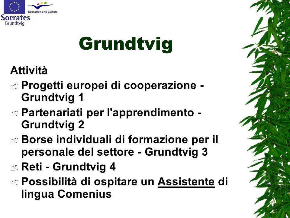 Grundtvig Attività  Progetti europei di cooperazione - Grundtvig 1  Partenariati per l'apprendimento - Grundtvig 2  Borse individuali di formazione