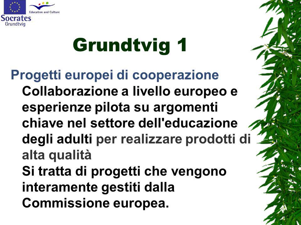 Grundtvig 1 Progetti europei di cooperazione Collaborazione a livello europeo e esperienze pilota su argomenti chiave nel settore dell educazione degli adulti per realizzare prodotti di alta qualità Si tratta di progetti che vengono interamente gestiti dalla Commissione europea.