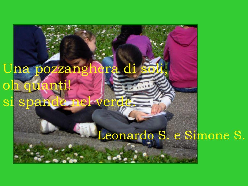 Una pozzanghera di soli, oh quanti! si spande nel verde. Leonardo S. e Simone S.