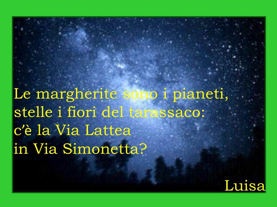 Le margherite sono i pianeti, stelle i fiori del tarassaco: c 'è la Via Lattea in Via Simonetta.