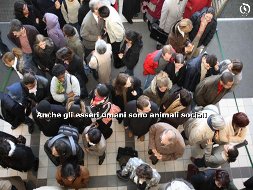 Anche gli esseri umani sono animali sociali O