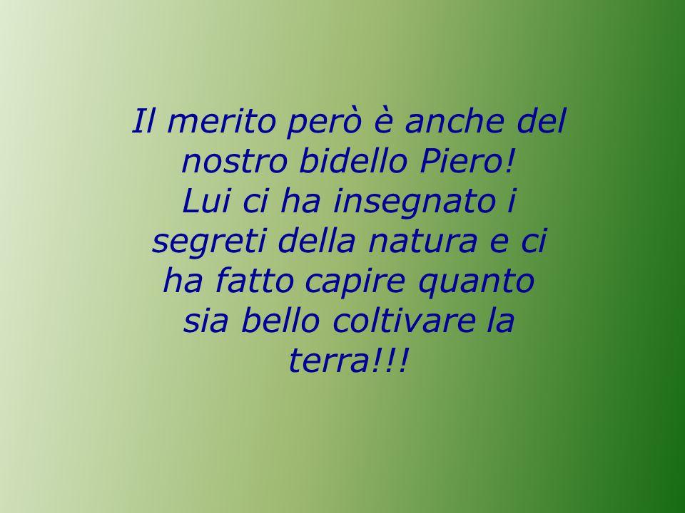 Il merito però è anche del nostro bidello Piero.