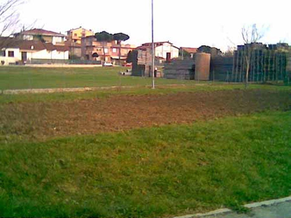 Dopo aver scelto la zona più soleggiata del giardino, Piero (il nostro bidello) e Davide hanno vangato la terra.