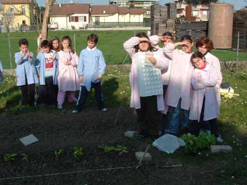 In marzo abbiamo iniziato a seminare nell'orto……