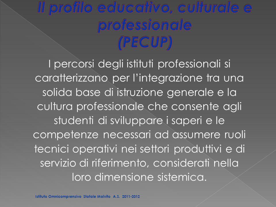 I percorsi degli istituti professionali si caratterizzano per l'integrazione tra una solida base di istruzione generale e la cultura professionale che consente agli studenti di sviluppare i saperi e le competenze necessari ad assumere ruoli tecnici operativi nei settori produttivi e di servizio di riferimento, considerati nella loro dimensione sistemica.