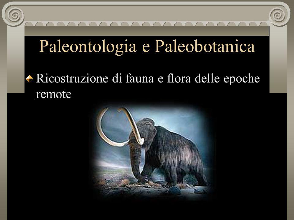 Paleontologia e Paleobotanica Ricostruzione di fauna e flora delle epoche remote