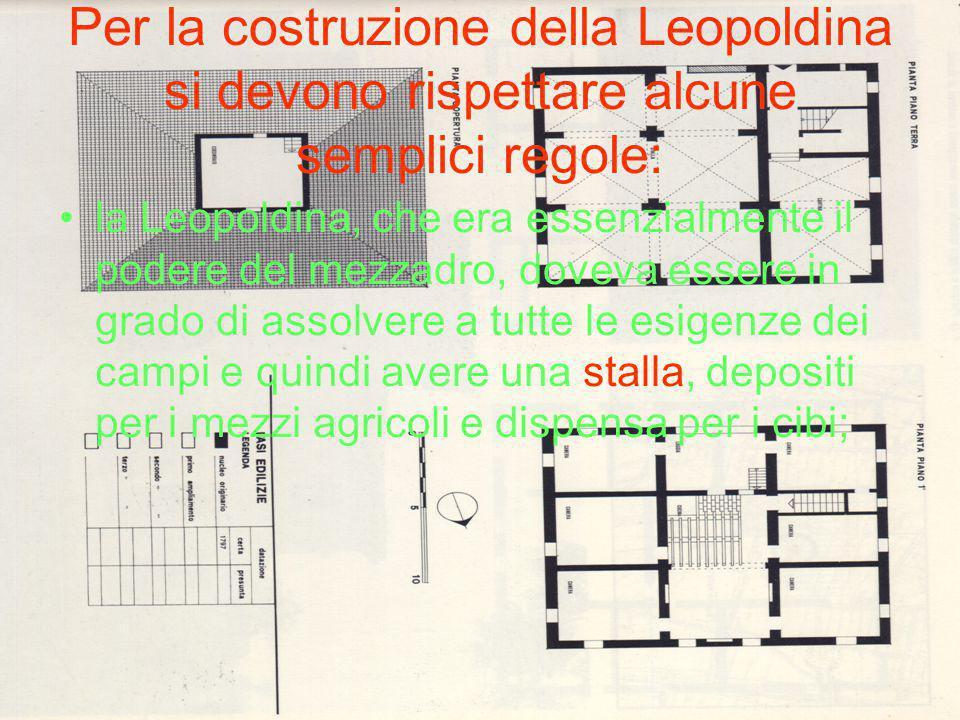 Per la costruzione della Leopoldina si devono rispettare alcune semplici regole: la Leopoldina, che era essenzialmente il podere del mezzadro, doveva