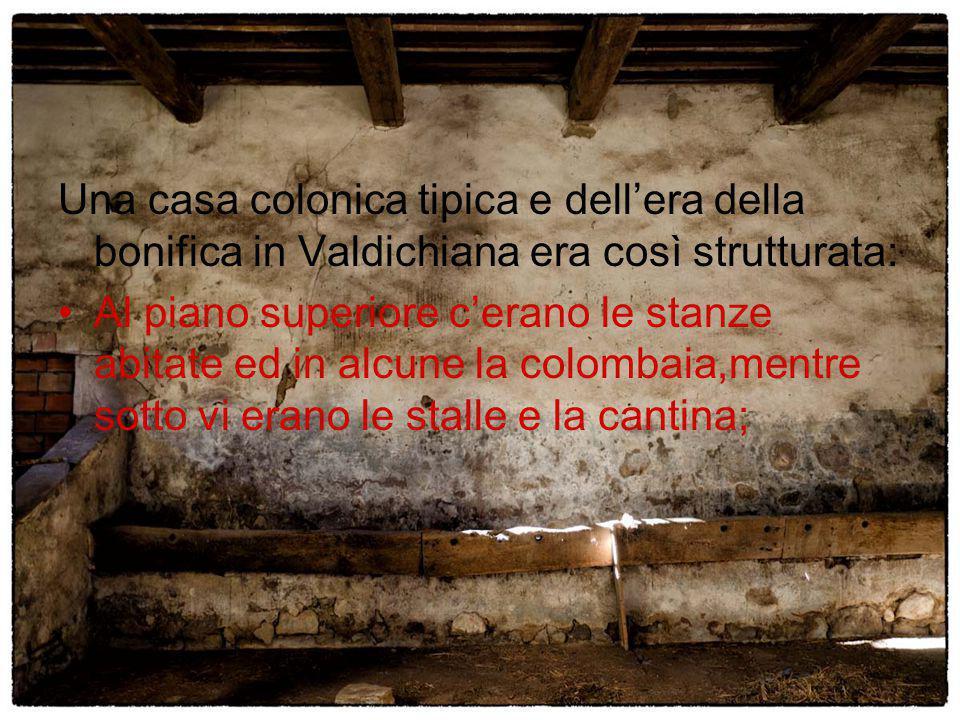 Una casa colonica tipica e dell'era della bonifica in Valdichiana era così strutturata: Al piano superiore c'erano le stanze abitate ed in alcune la c