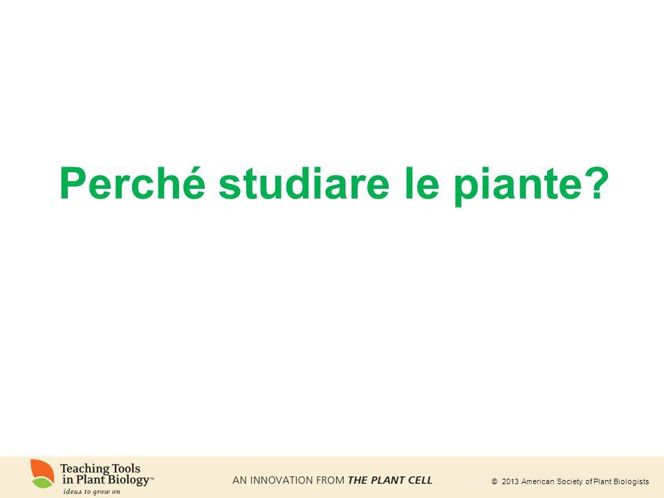 © 2013 American Society of Plant Biologists Perché studiare le piante?