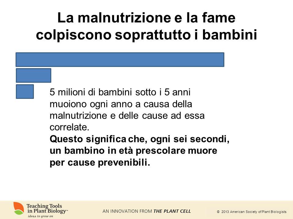 © 2013 American Society of Plant Biologists 5 milioni di bambini sotto i 5 anni muoiono ogni anno a causa della malnutrizione e delle cause ad essa co