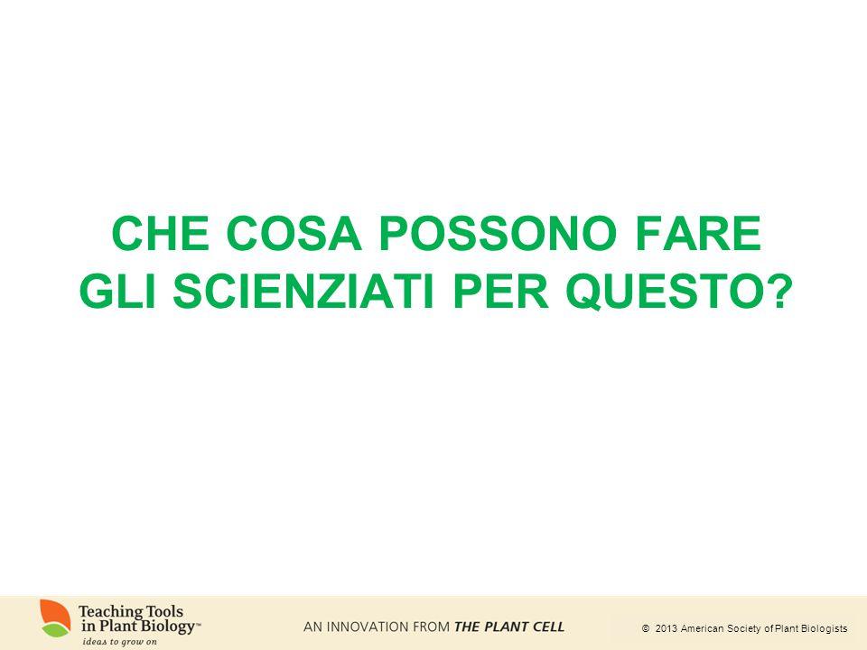 © 2013 American Society of Plant Biologists CHE COSA POSSONO FARE GLI SCIENZIATI PER QUESTO?