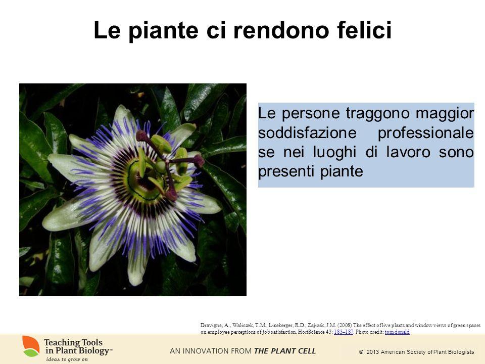© 2013 American Society of Plant Biologists Le persone traggono maggior soddisfazione professionale se nei luoghi di lavoro sono presenti piante Le pi