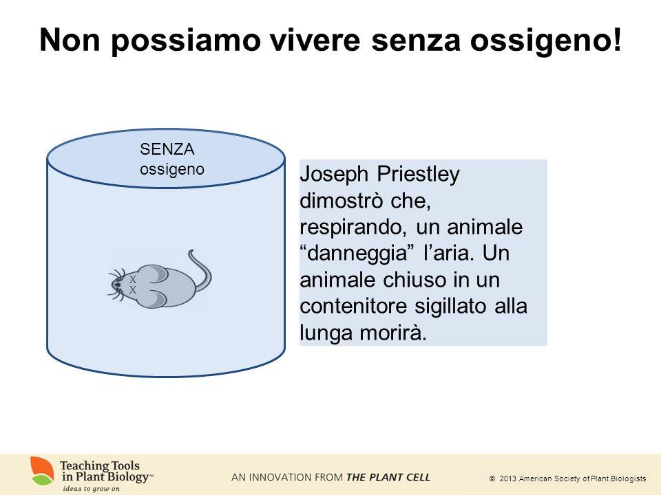 © 2013 American Society of Plant Biologists Non possiamo vivere senza ossigeno! X X SENZA ossigeno Joseph Priestley dimostrò che, respirando, un anima