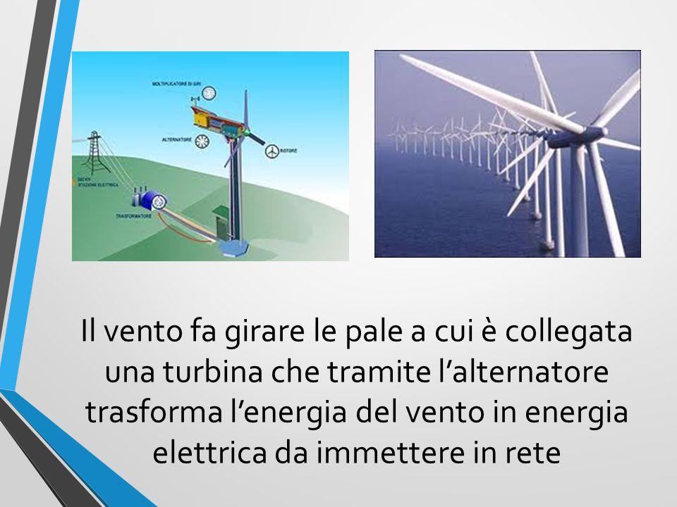 Il vento fa girare le pale a cui è collegata una turbina che tramite l'alternatore trasforma l'energia del vento in energia elettrica da immettere in rete