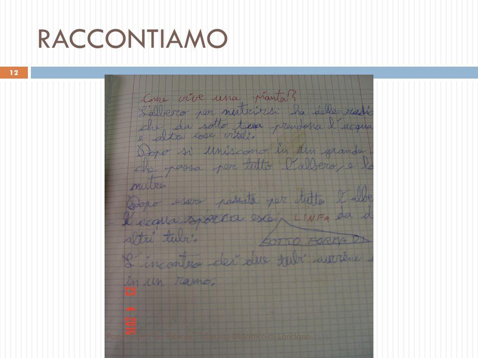 RAPPRESENTIAMO I TUBICINI DI UNA PIANTA 11 Paola Zolfo