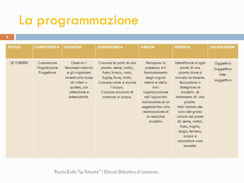 La progettazione classe II TraguardiConcettiAbilitàTraguardi di competenza in uscita al primo ciclo Competenze chiave di cittadinanza Individuare il r
