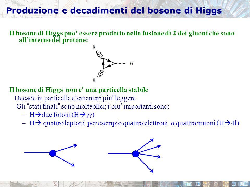 Produzione e decadimenti del bosone di Higgs Il bosone di Higgs puo' essere prodotto nella fusione di 2 dei gluoni che sono all'interno del protone: Il bosone di Higgs non e' una particella stabile Decade in particelle elementari piu' leggere Gli stati finali sono molteplici; i piu' importanti sono: –H  due fotoni (H  γγ) –H  quattro leptoni, per esempio quattro elettroni o quattro muoni (H  4l)