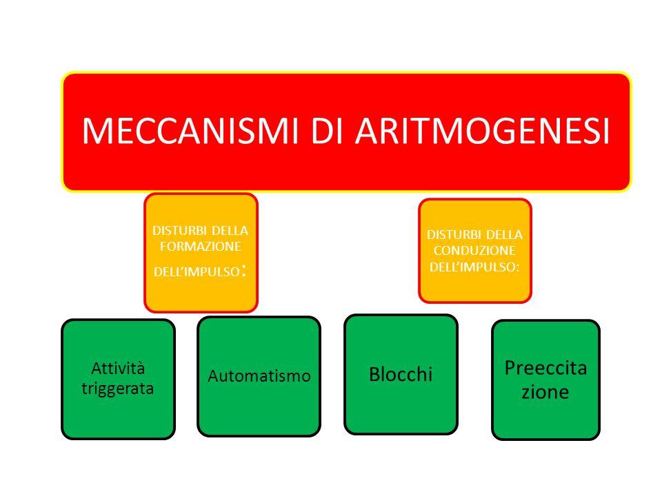 MECCANISMI DI ARITMOGENESI Automatismo Attività triggerata Blocchi Preeccita zione DISTURBI DELLA FORMAZIONE DELL'IMPULSO : DISTURBI DELLA CONDUZIONE DELL'IMPULSO: