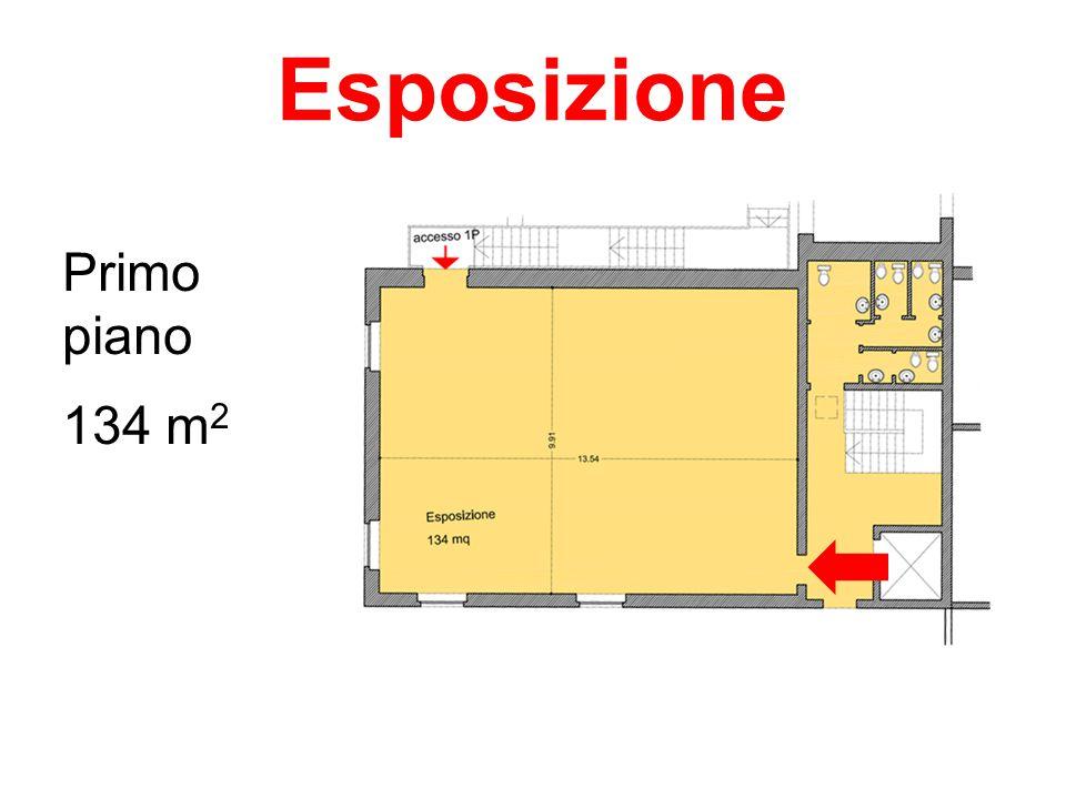 Esposizione Primo piano 134 m 2