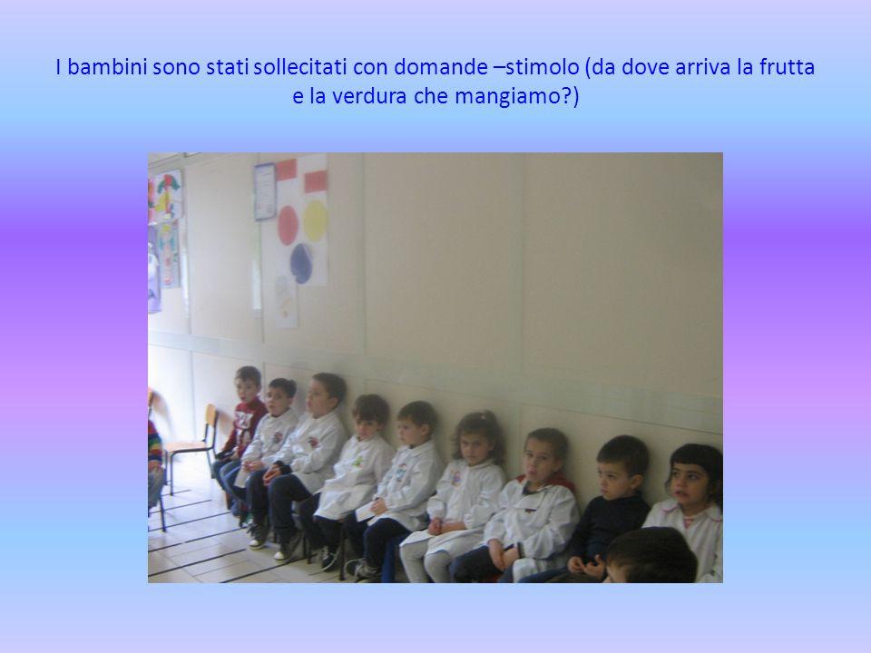 I bambini sono stati sollecitati con domande –stimolo (da dove arriva la frutta e la verdura che mangiamo?)