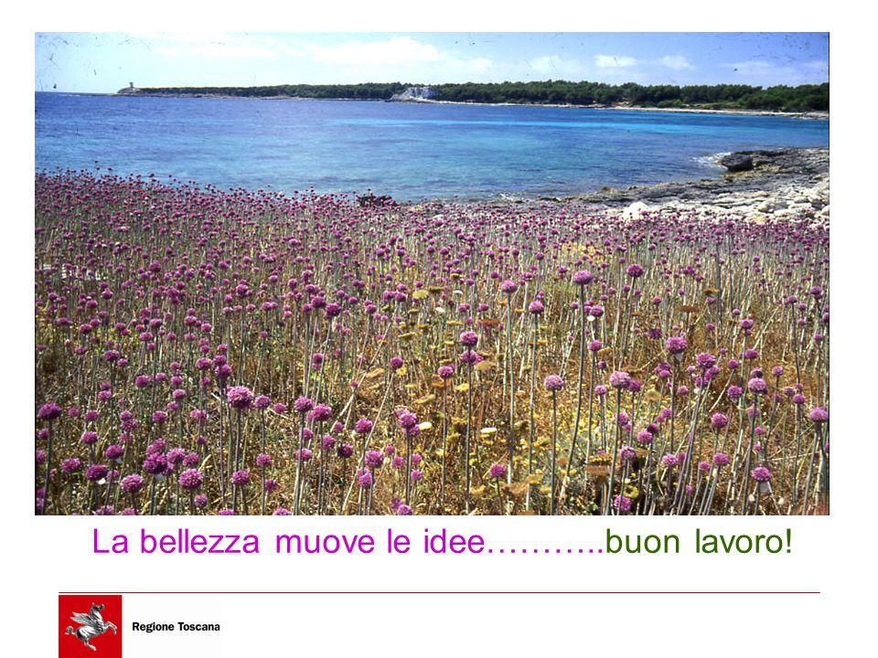 17/10/1441 La bellezza muove le idee………..buon lavoro!