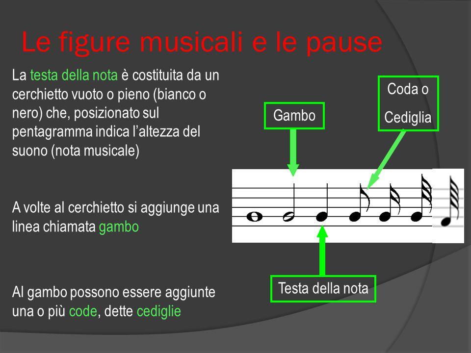 Le figure musicali e le pause  Le figure musicali sono formate da tre elementi: La testa della nota Il gambo Le code o cediglie