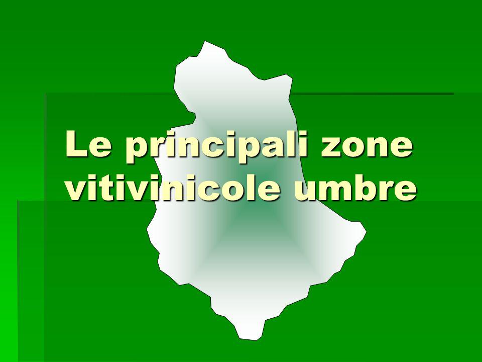 LFTORGIANO UMBRIA L'ESTENSIONE DELLA ZONA È PIUTTOSTO LIMITATA, MA AL SUO INTERNO VENGONO PRODOTTE 12 TIPOLOGIE DI VINO DOC E UN VINO DOCG DOC BIANCO, ROSSO, ROSATO SPUMANTE CHARDONNAY PINOT GRIGIO RIESLING ITALICO VENDEMMIA TARDIVA VINSANTO CABERNET SAUVIGNON MERLOT PINOT NERO