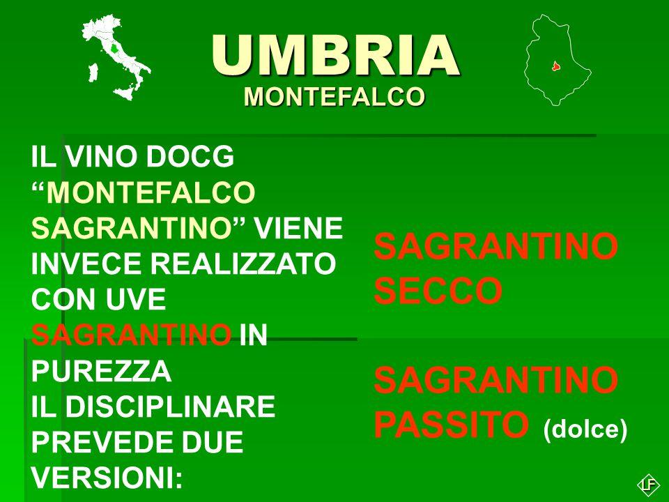 LFUMBRIA MONTEFALCO IL MONTEFALCO BIANCO NASCE DA UN UVAGGIO DI GRECHETTO (min.