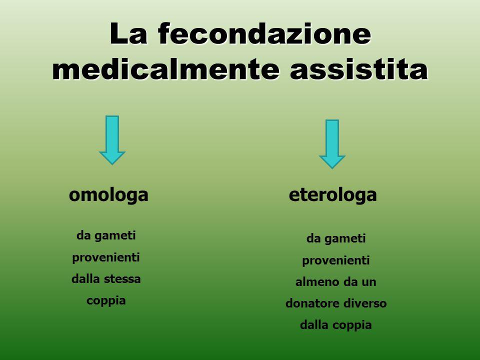 La fecondazione medicalmente assistita eterologaomologa da gameti provenienti almeno da un donatore diverso dalla coppia da gameti provenienti dalla s
