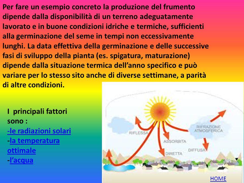 Per fare un esempio concreto la produzione del frumento dipende dalla disponibilità di un terreno adeguatamente lavorato e in buone condizioni idriche