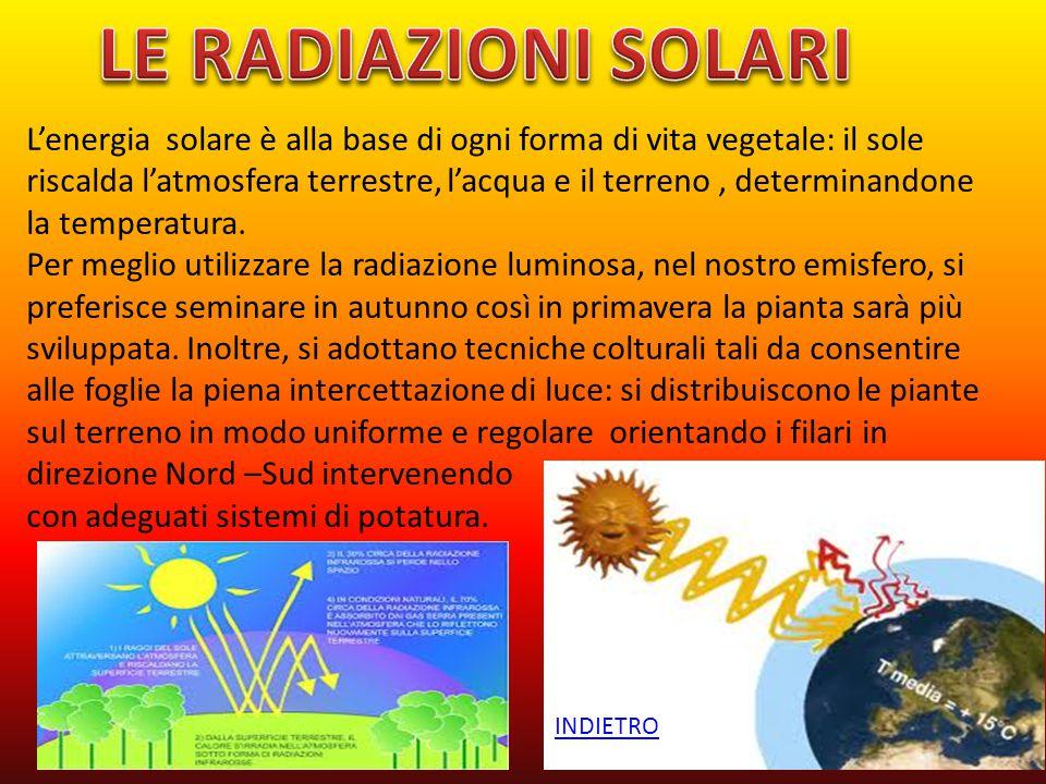 L'energia solare è alla base di ogni forma di vita vegetale: il sole riscalda l'atmosfera terrestre, l'acqua e il terreno, determinandone la temperatu