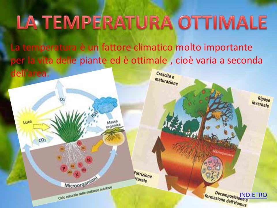 La temperatura è un fattore climatico molto importante per la vita delle piante ed è ottimale, cioè varia a seconda dell'area. INDIETRO