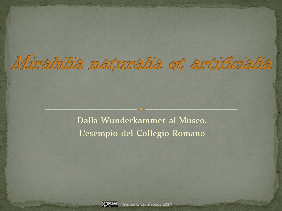 Dalla Wunderkammer al Museo. L'esempio del Collegio Romano Giuliano Cianfrocca 2014
