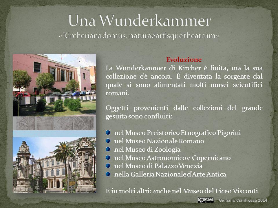 Giuliano Cianfrocca 2014 Evoluzione La Wunderkammer di Kircher è finita, ma la sua collezione c'è ancora.