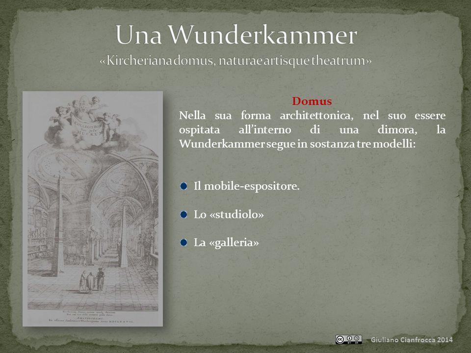 Giuliano Cianfrocca 2014 Domus Nella sua forma architettonica, nel suo essere ospitata all'interno di una dimora, la Wunderkammer segue in sostanza tre modelli: Il mobile-espositore.
