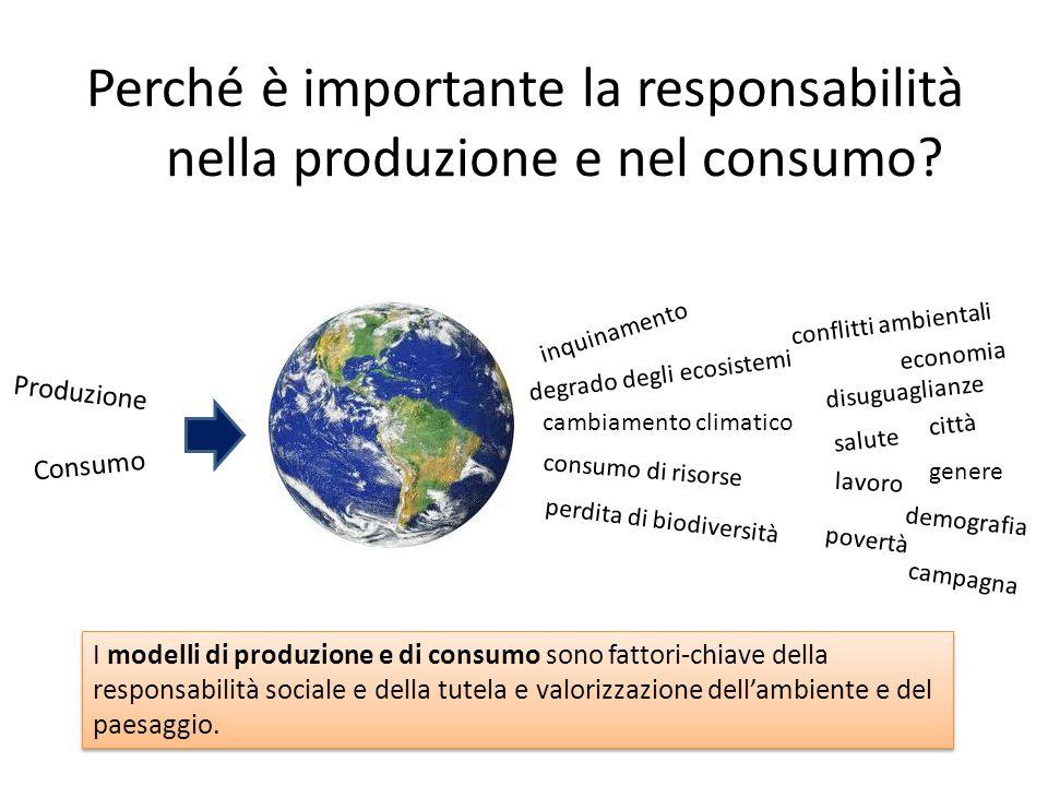 La diffusione dei reti di economia solidale in Lombardia In Lombardia sono stati rilevati 429 GAS di cui 204 hanno partecipato alla ricerca che ha coinvolto 1.658 famiglie (ricerca dell'Oss.