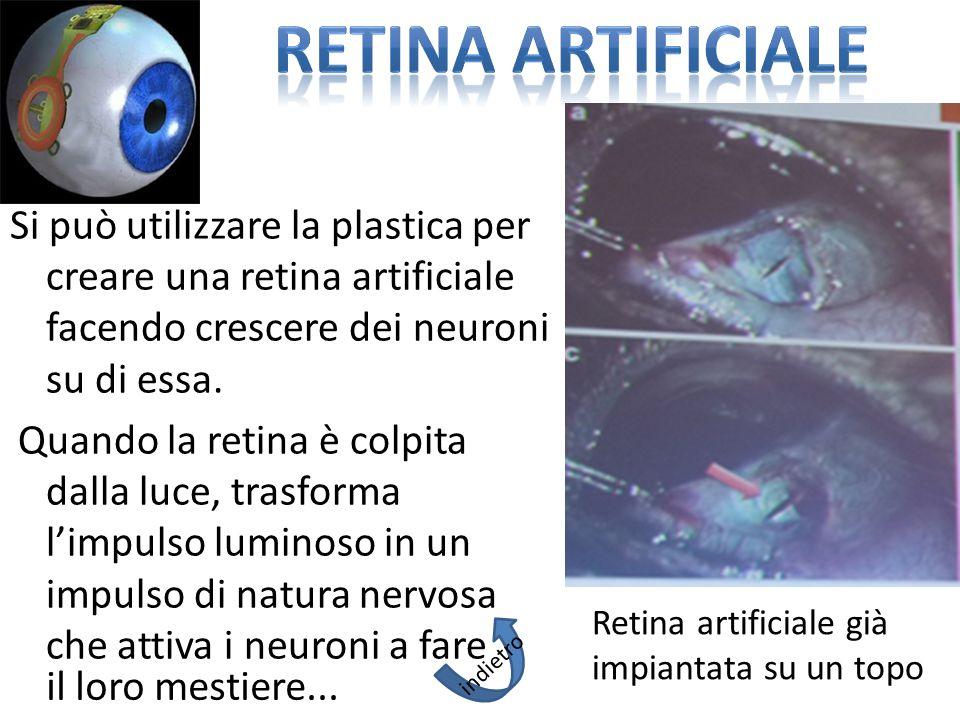 Si può utilizzare la plastica per creare una retina artificiale facendo crescere dei neuroni su di essa. Quando la retina è colpita dalla luce, trasfo