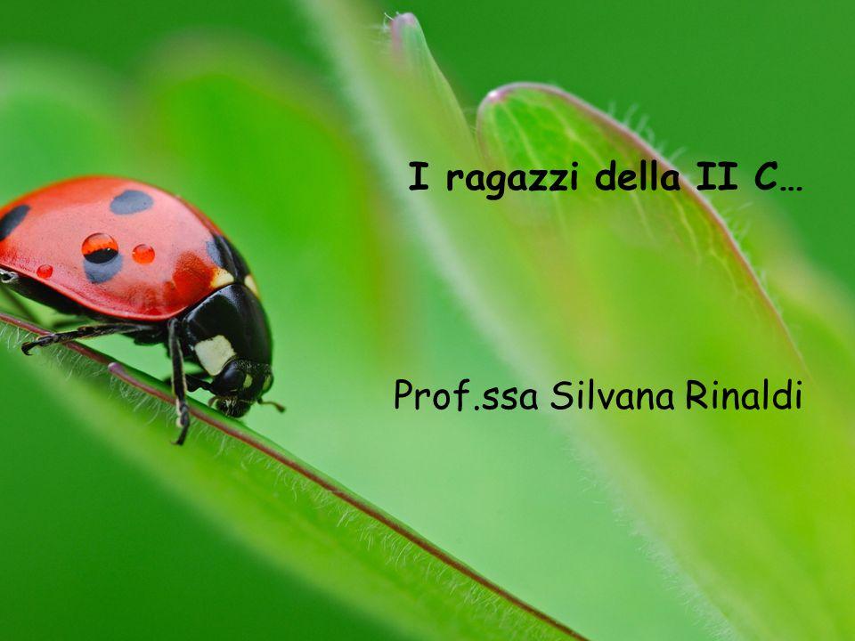 I ragazzi della II C… Prof.ssa Silvana Rinaldi