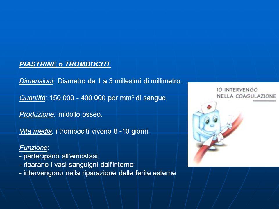 PIASTRINE o TROMBOCITI Dimensioni: Diametro da 1 a 3 millesimi di millimetro.